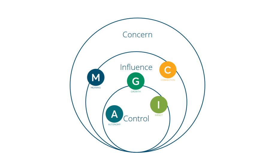 Where the MAGIC elements fit into your circle of influence